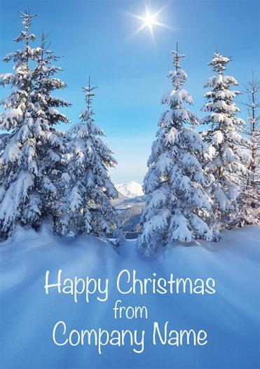 1617 - Forest Sun Branded Christmas Card
