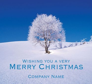 1656 - Frosty Tree Branded Christmas Card